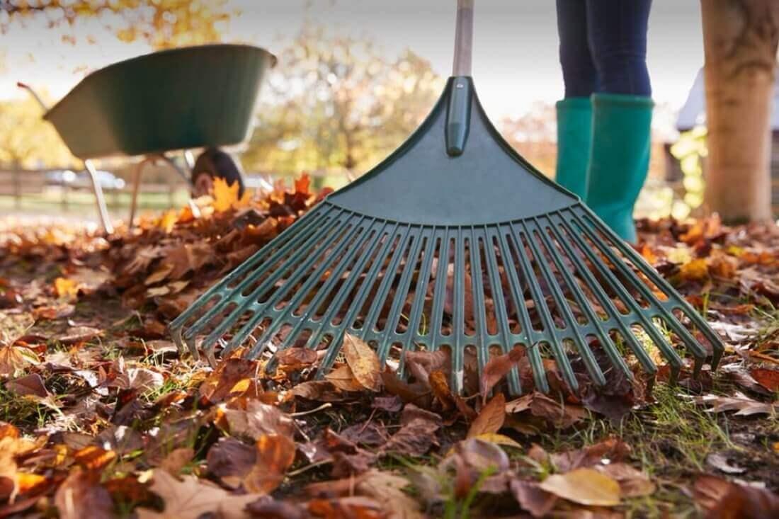 nov_raking-leaves-min